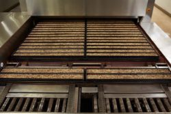 Extremely long indeed: A baking line consisting of pre-bake and bake-through oven can be up to 60 metres long.