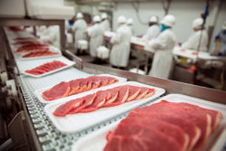 The German Butchers' Association is unhappy about the new rules and would like to have a say in the drafting of possible amendments. Photo: Pork chops at handling factory packaging plant raw organic ©