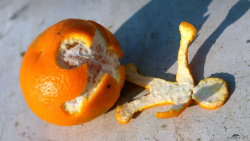 Take orange peels and extract their limonene, then oxidise it and combine it with carbon dioxide: and voila, there's your bio-based plastic, which can be turned into any number of different products.